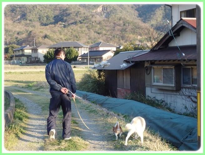 f:id:yasukazu01:20150401230316j:image