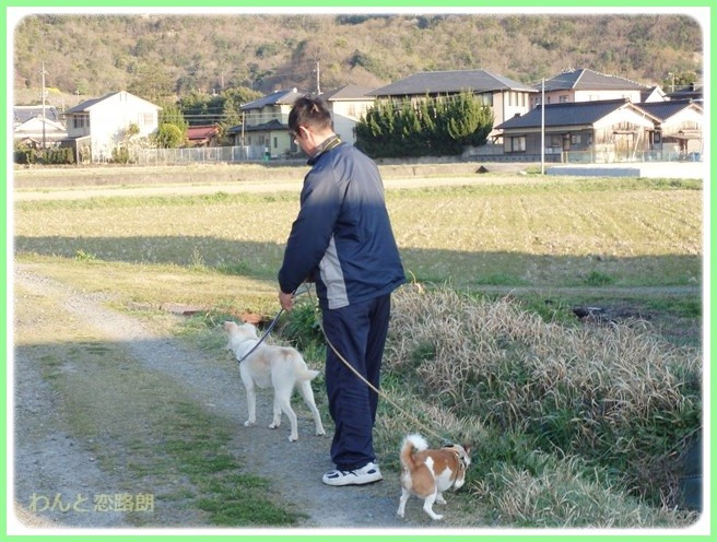 f:id:yasukazu01:20150401230356j:image