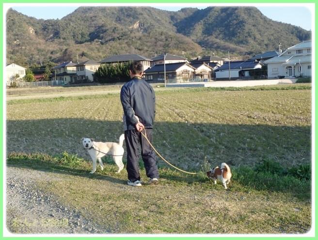 f:id:yasukazu01:20150401230442j:image