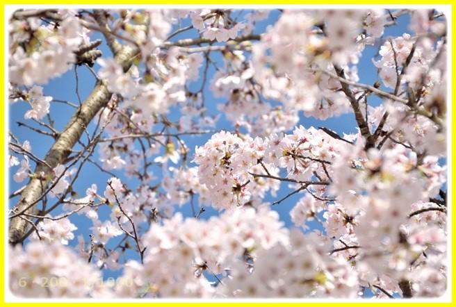 f:id:yasukazu01:20150402212542j:image