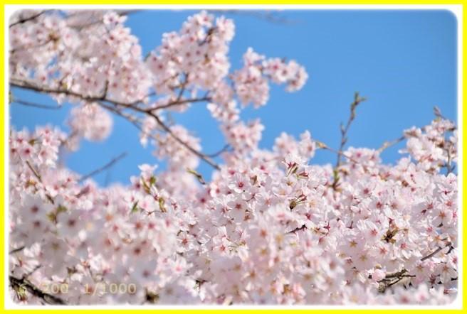 f:id:yasukazu01:20150402212704j:image