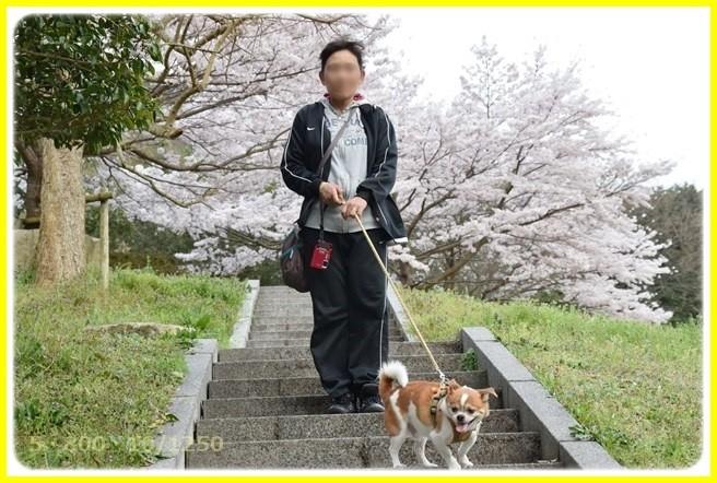 f:id:yasukazu01:20150403224719j:image