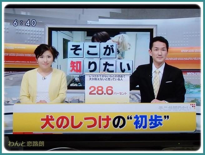 f:id:yasukazu01:20150405200832j:image