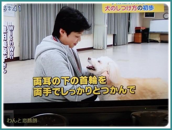 f:id:yasukazu01:20150405201238j:image