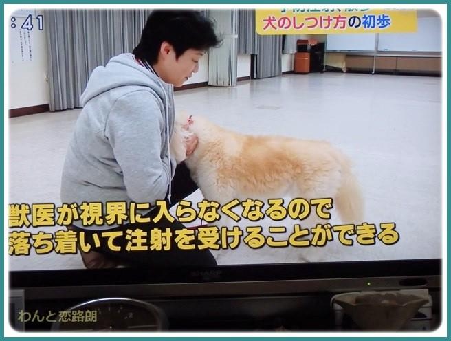 f:id:yasukazu01:20150405201441j:image