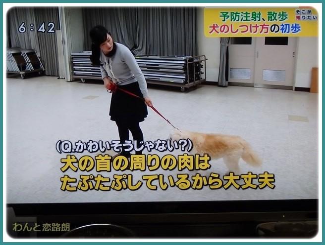 f:id:yasukazu01:20150405201554j:image