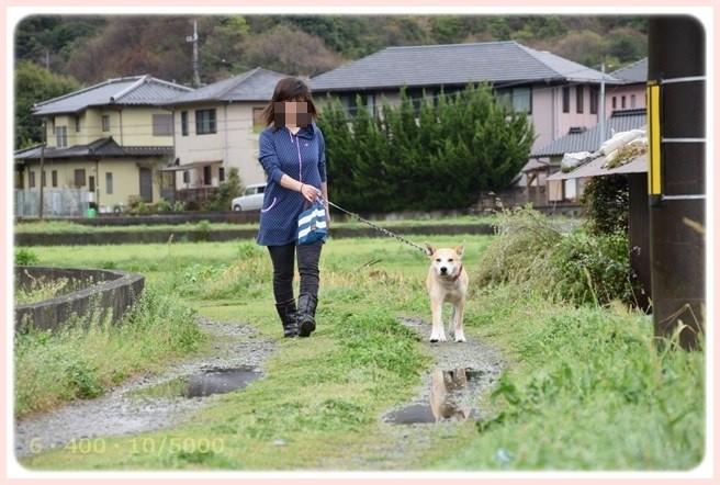 f:id:yasukazu01:20150407201236j:image