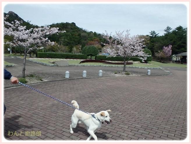 f:id:yasukazu01:20150408223531j:image