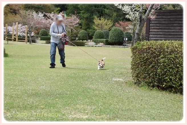 f:id:yasukazu01:20150408224209j:image