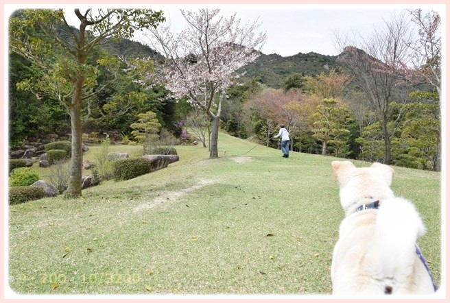 f:id:yasukazu01:20150408224613j:image