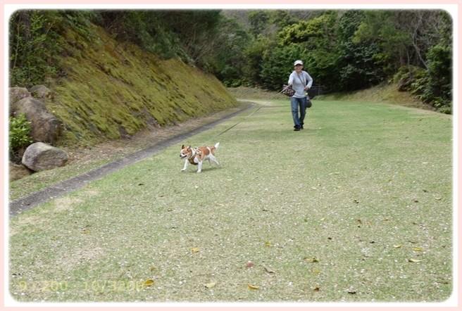 f:id:yasukazu01:20150408225131j:image