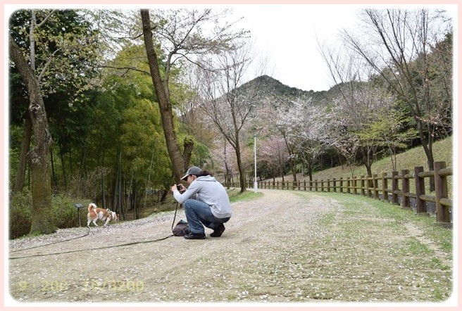 f:id:yasukazu01:20150409223548j:image
