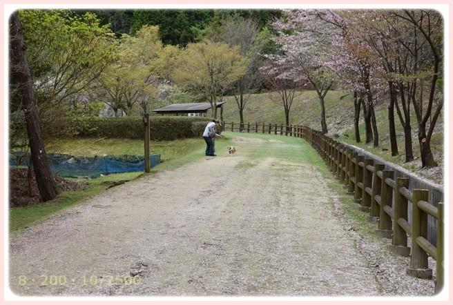 f:id:yasukazu01:20150409223949j:image