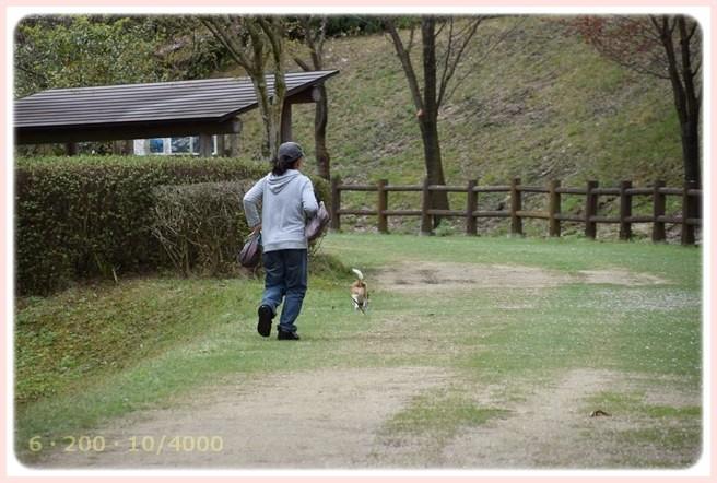 f:id:yasukazu01:20150409224019j:image
