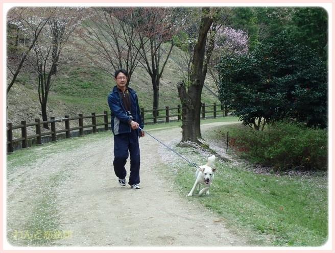 f:id:yasukazu01:20150409224523j:image