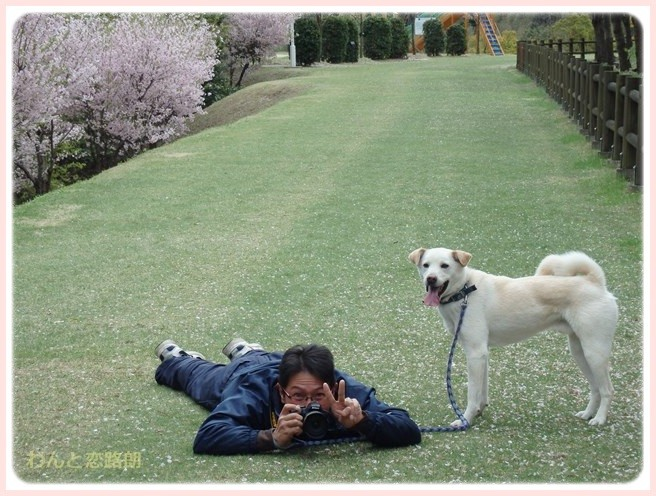 f:id:yasukazu01:20150409225249j:image