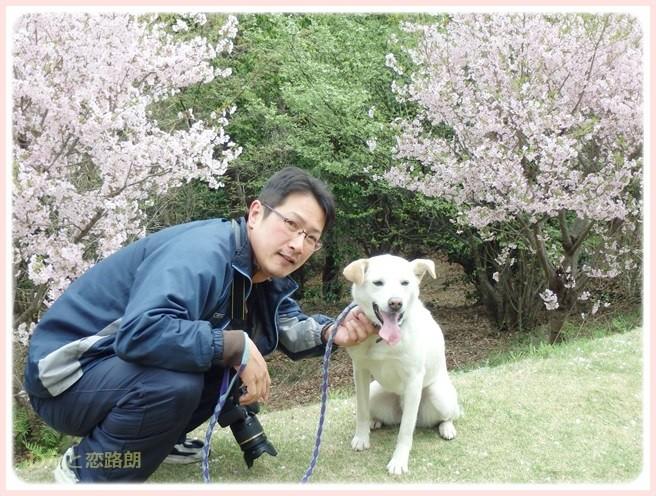 f:id:yasukazu01:20150409225427j:image