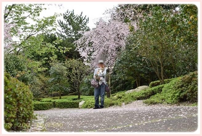f:id:yasukazu01:20150410225757j:image
