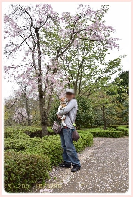 f:id:yasukazu01:20150410225828j:image