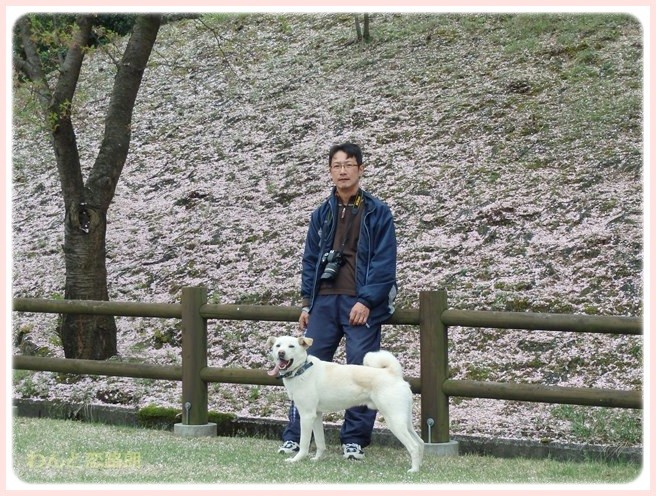 f:id:yasukazu01:20150410230505j:image
