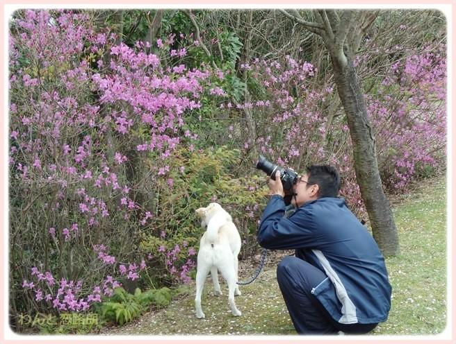 f:id:yasukazu01:20150410230713j:image