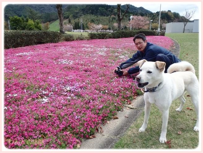 f:id:yasukazu01:20150411195430j:image