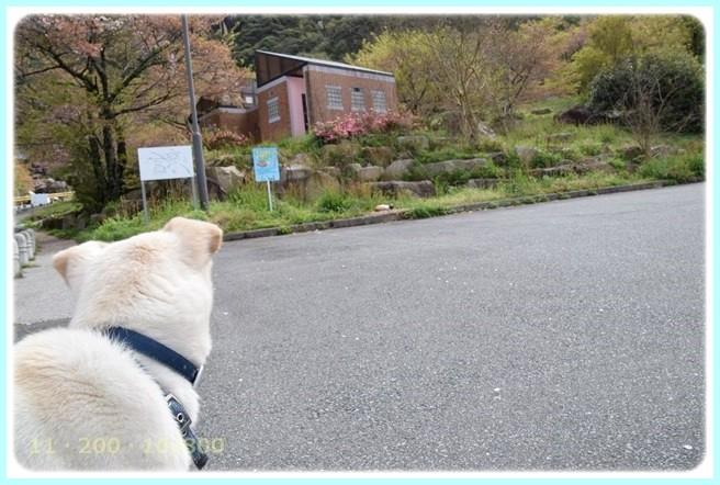 f:id:yasukazu01:20150412222819j:image