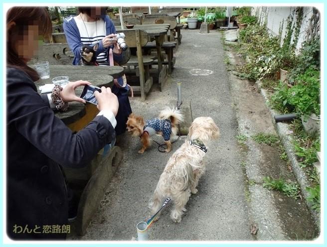 f:id:yasukazu01:20150414200752j:image