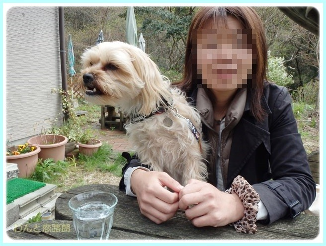 f:id:yasukazu01:20150414201053j:image
