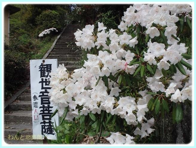 f:id:yasukazu01:20150416223956j:image