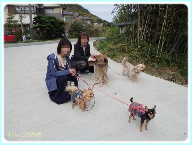 f:id:yasukazu01:20150417225531j:image