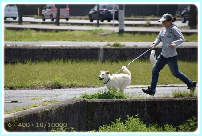 f:id:yasukazu01:20150418204650j:image