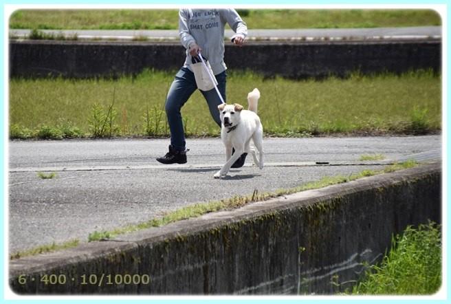 f:id:yasukazu01:20150418205341j:image