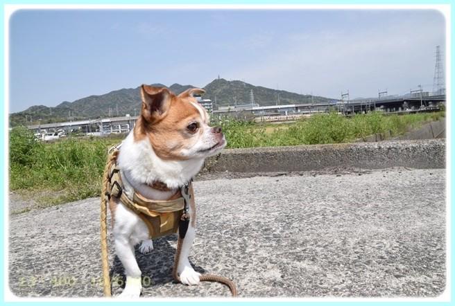 f:id:yasukazu01:20150419225530j:image
