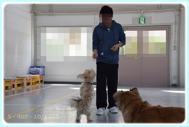 f:id:yasukazu01:20150420205228j:image