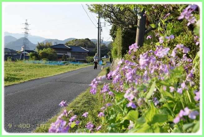 f:id:yasukazu01:20150423223957j:image