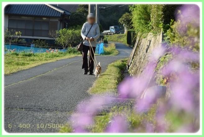 f:id:yasukazu01:20150423224101j:image