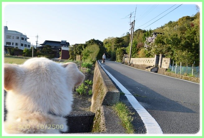 f:id:yasukazu01:20150423224314j:image