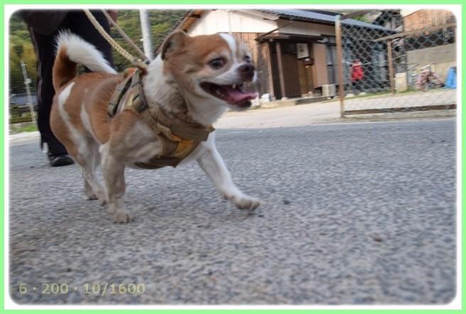 f:id:yasukazu01:20150424185116j:image