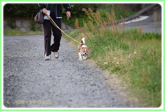 f:id:yasukazu01:20150430224341j:image