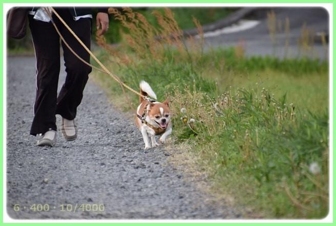 f:id:yasukazu01:20150430224442j:image