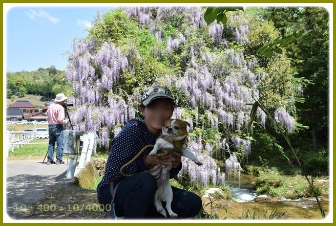 f:id:yasukazu01:20150501204846j:image