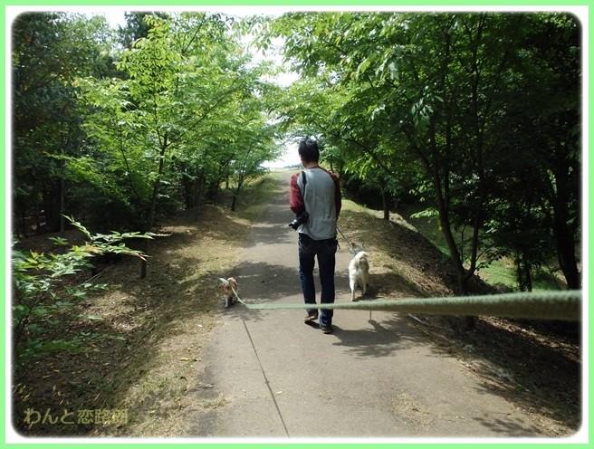 f:id:yasukazu01:20150502221224j:image