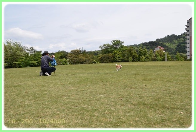 f:id:yasukazu01:20150502221736j:image