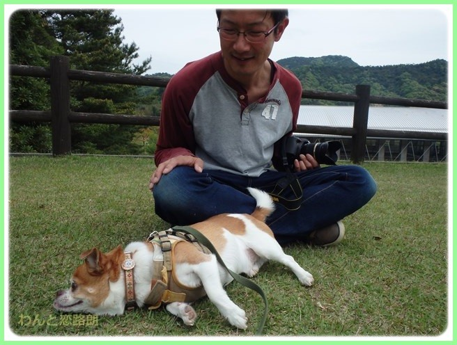 f:id:yasukazu01:20150503220853j:image