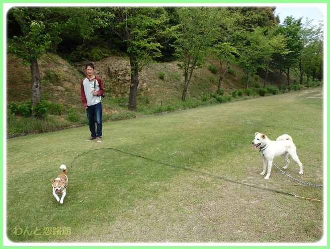 f:id:yasukazu01:20150503221631j:image