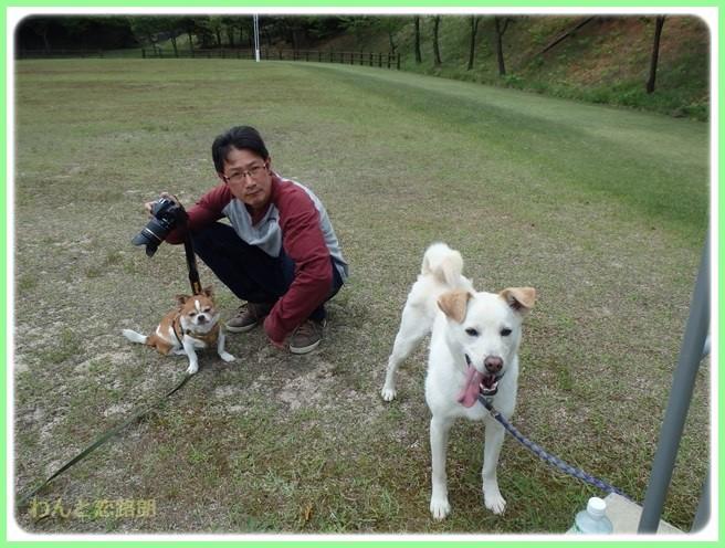 f:id:yasukazu01:20150503221848j:image