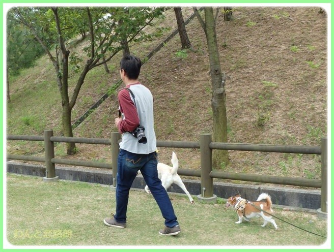 f:id:yasukazu01:20150504225058j:image