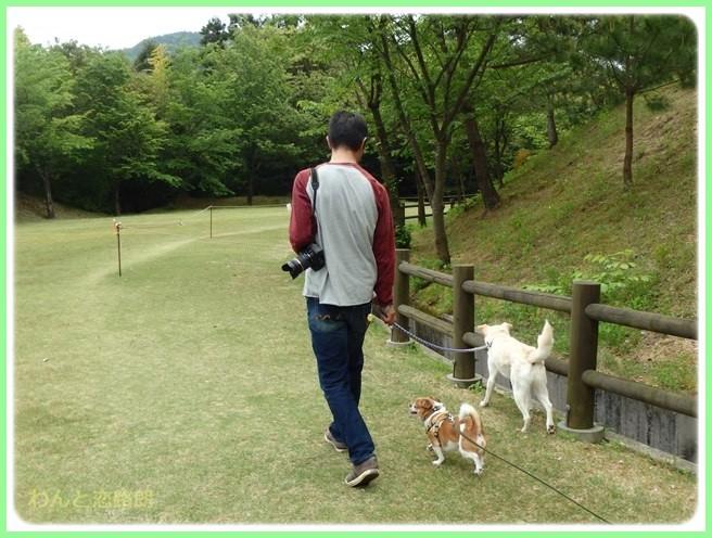 f:id:yasukazu01:20150504225148j:image