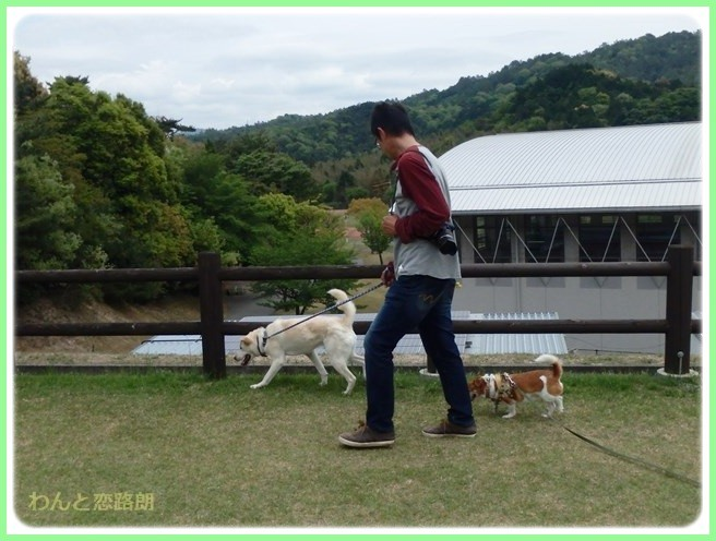 f:id:yasukazu01:20150504225531j:image
